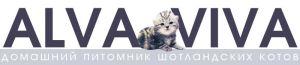 Питомник AlvaViva - британские котята, коты и кошки, купить котенка, продажа котят Киев